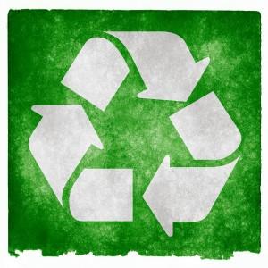 környezeti szakfordítás